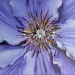 Lilac clematis - Oil on canvas 50x40cm